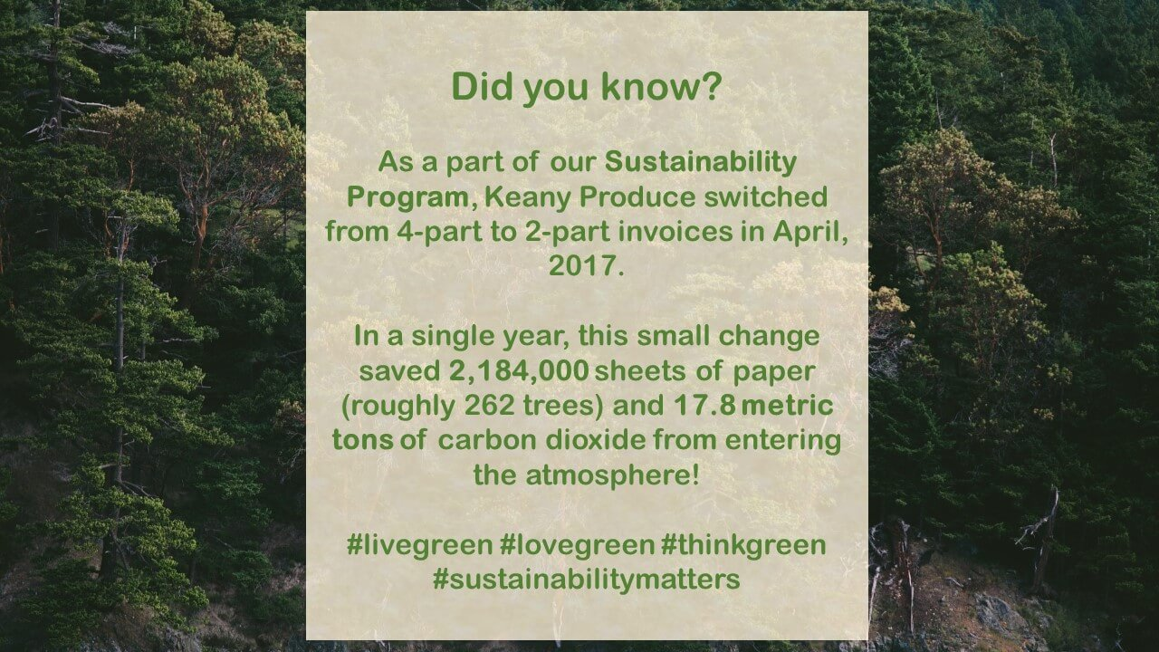 Sustainability Update: Paper Reduction