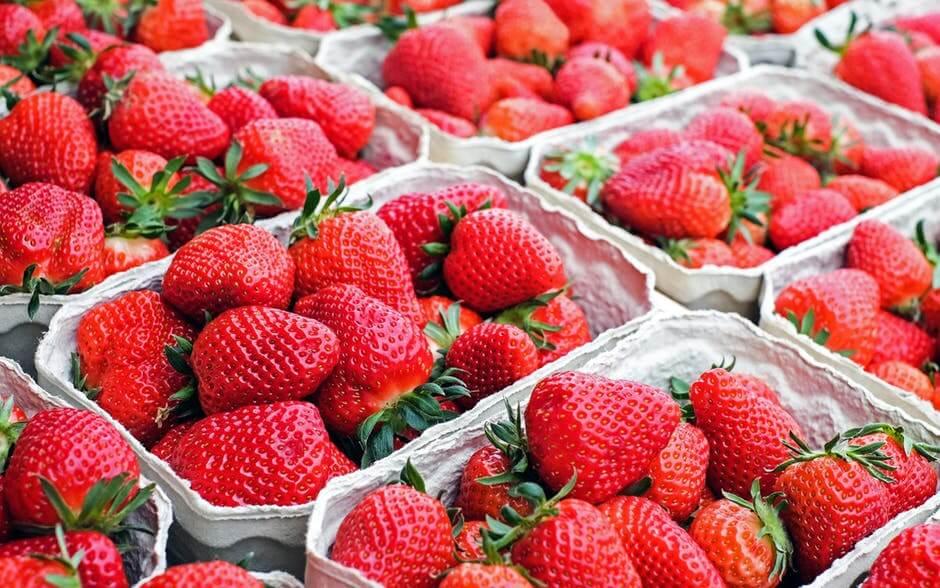 Cartons of strawberries