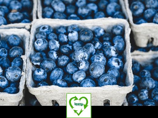 Sustainability Update: Local versus Organic